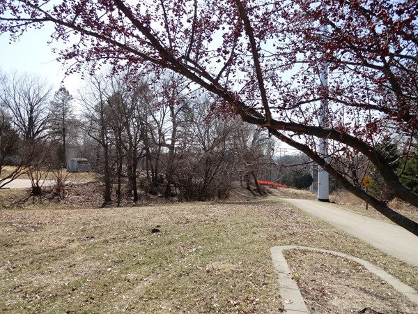 Vacant lot along the Mississippi River Trail on South Grandview Avenue.  A great place to walk