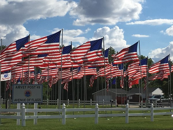 Cedar Falls AMVET Post 49 Avenue of Flags is a stunning tribute to those who have served